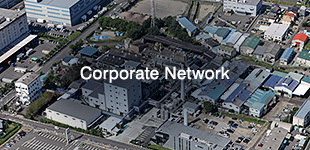 Corporate Network