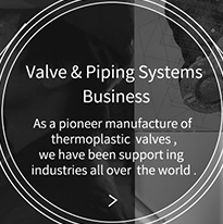 Valve & Piping Systems Business